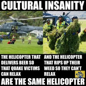 culturalstupidity