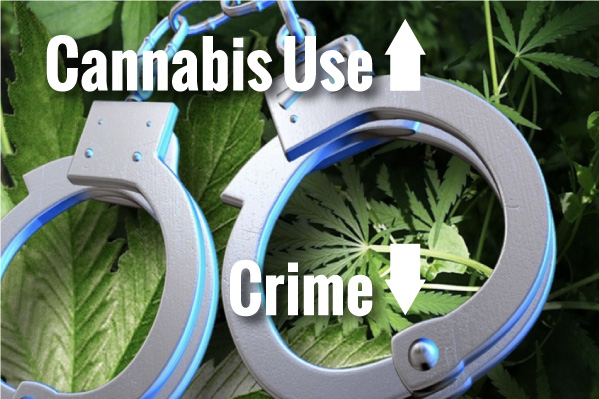 The Case For Cannabis: Cannabis Does Not Lead to Crime